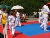 altstadtfest_2013-06