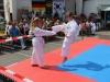 altstadtfest_2014-004-jpg