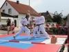 altstadtfest_2014-05-jpg