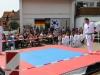 altstadtfest_2014-09-jpg