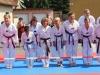 altstadtfest_2014-33-jpg