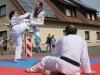 altstadtfest_2014-41-jpg