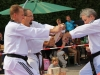 altstadtfest_2014-50-jpg