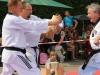 altstadtfest_2014-51-jpg