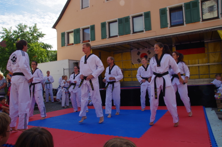 altstadtfest_2015-136-jpg