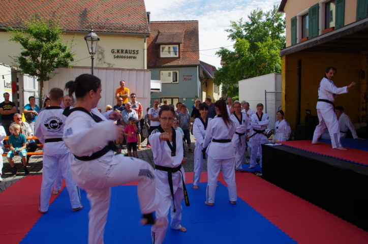 altstadtfest_2015-141-jpg