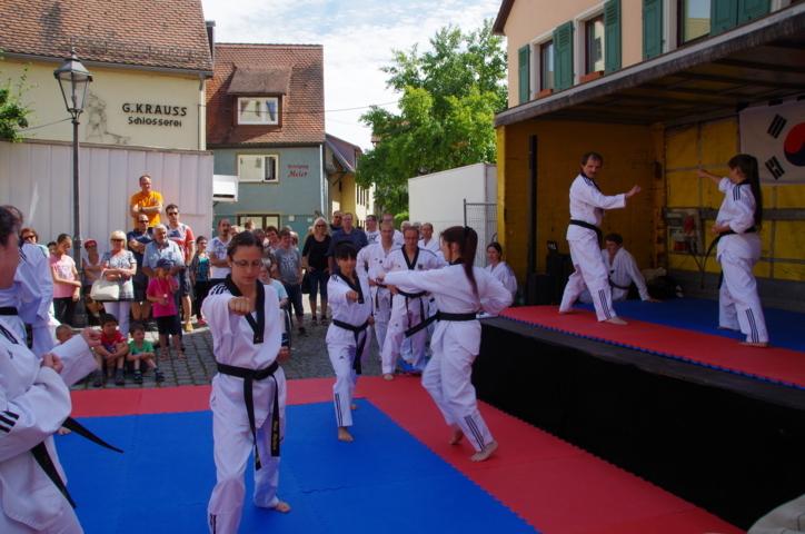 altstadtfest_2015-142-jpg