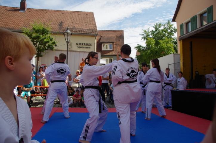 altstadtfest_2015-143-jpg