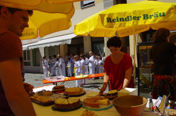 altstadtfest_2015-17-jpg
