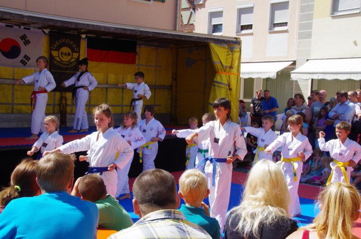 altstadtfest_2015-25-jpg