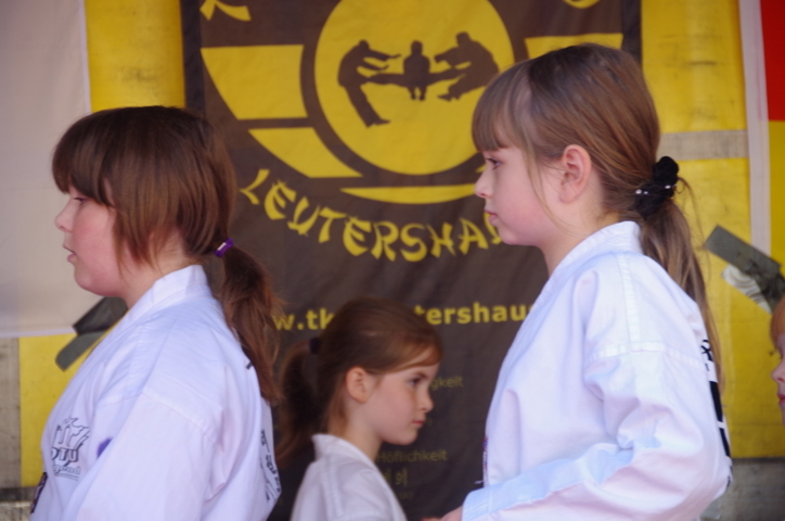 altstadtfest_2015-36-jpg