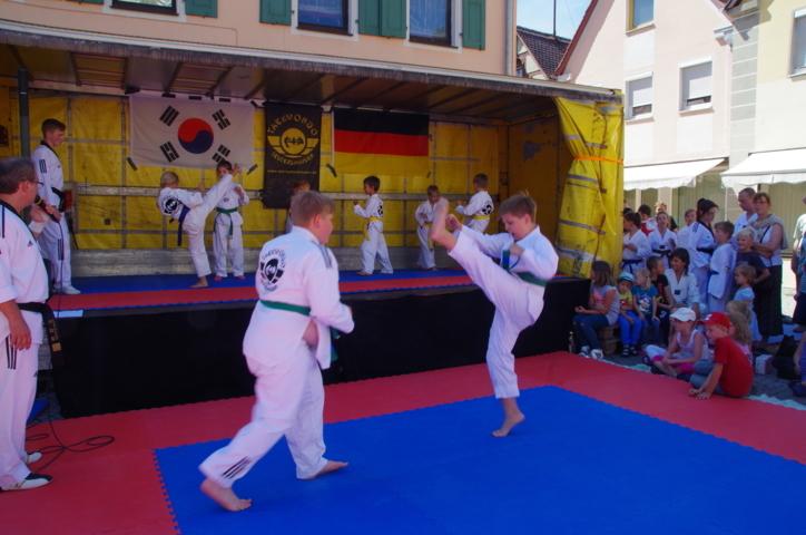 altstadtfest_2015-41-jpg