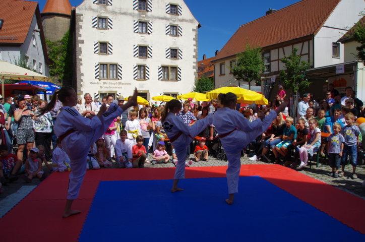 altstadtfest_2015-70-jpg