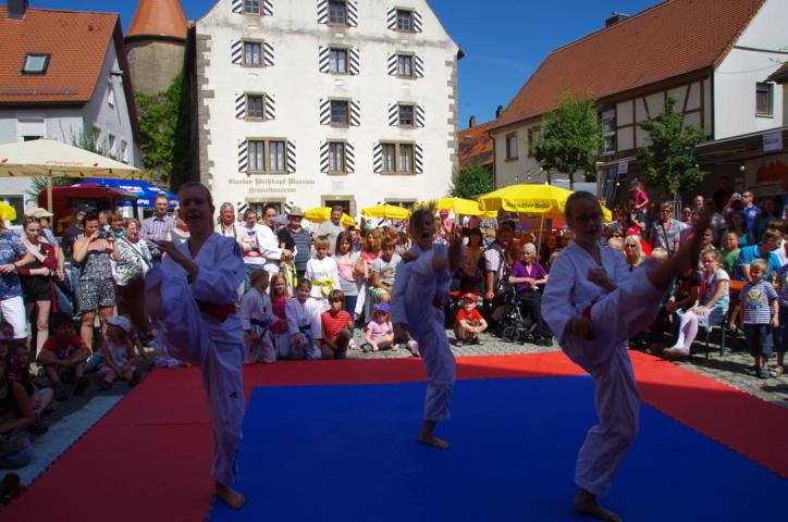 altstadtfest_2015-71-jpg