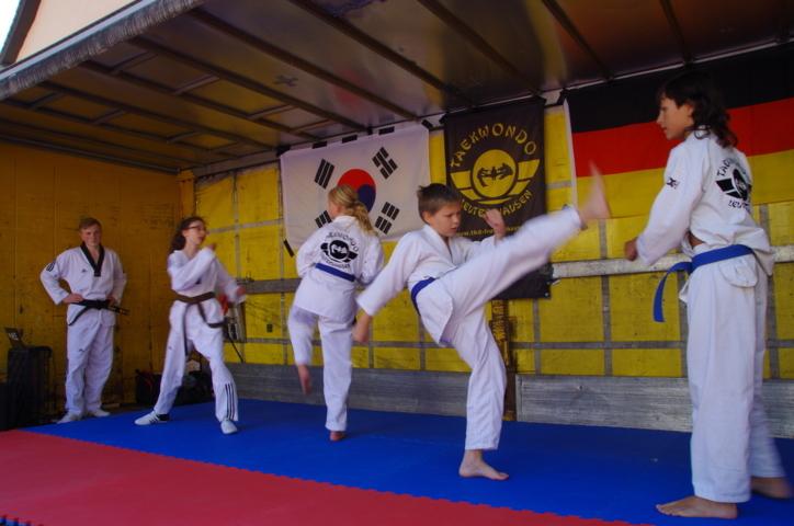 altstadtfest_2015-76-jpg