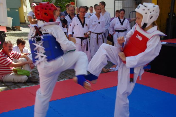 altstadtfest_2015-84-jpg