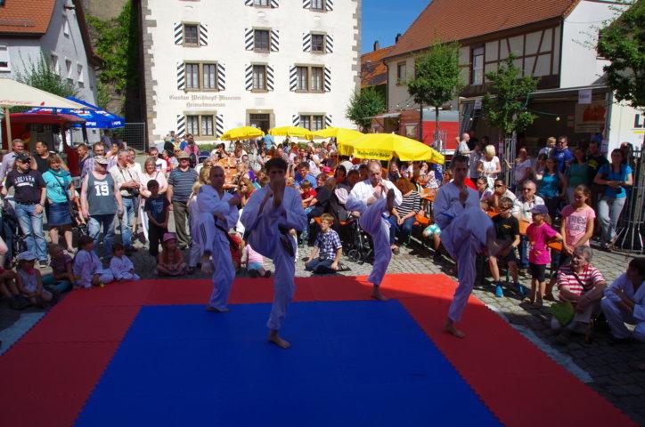 altstadtfest_2015-87-jpg