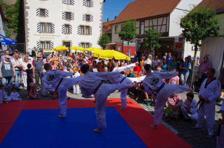 altstadtfest_2015-89-jpg