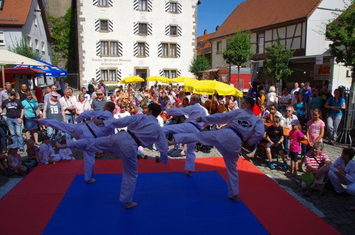 altstadtfest_2015-90-jpg