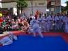 altstadtfest_2015-101-jpg