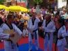 altstadtfest_2015-181-jpg