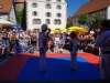 altstadtfest_2015-48-jpg