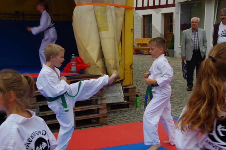 altstadtfest_2016_15-jpg