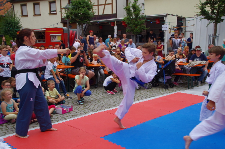 altstadtfest_2016_32-jpg