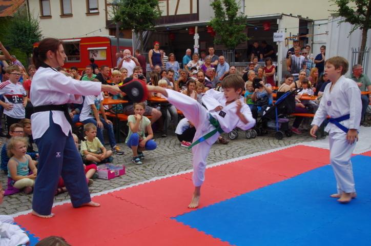 altstadtfest_2016_33-jpg