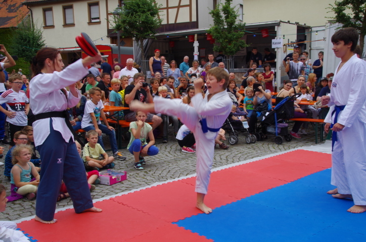 altstadtfest_2016_34-jpg
