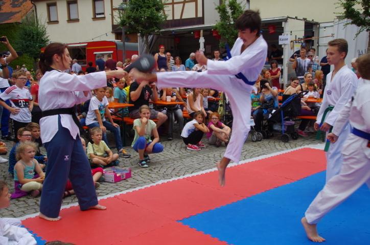 altstadtfest_2016_35-jpg