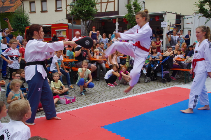altstadtfest_2016_36-jpg
