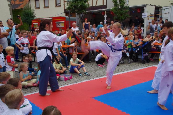 altstadtfest_2016_40-jpg
