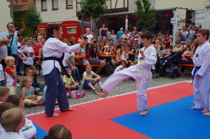 altstadtfest_2016_41-jpg