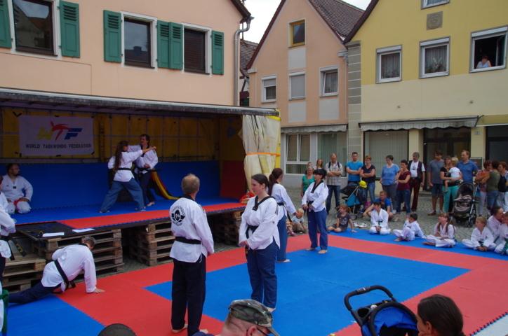altstadtfest_2016_61-jpg
