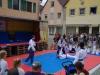 altstadtfest_2016_70-jpg