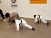 eltern_kind_training_19